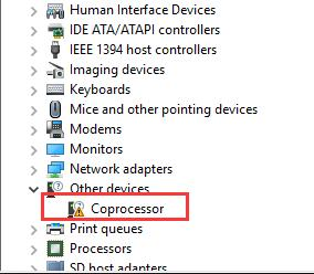 corprocessor driver device manager