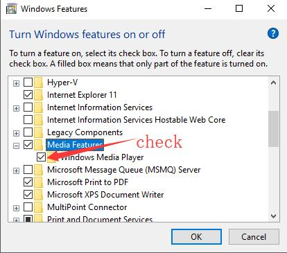 check the box of windows media player