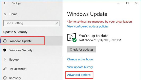 advanced options in windows update