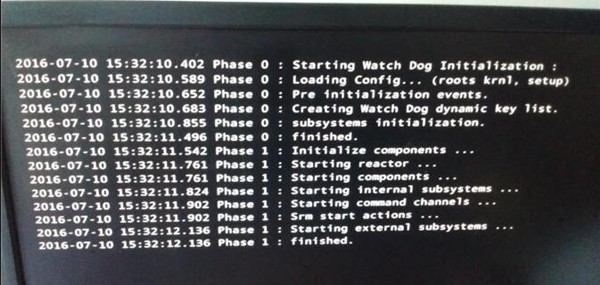 starting watchdog initialization black screen