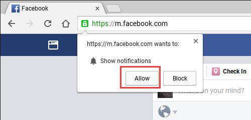allow to show notifications